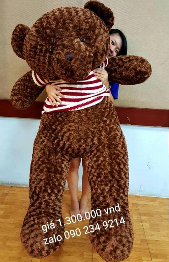 hình ảnh gấu bông dễ thương