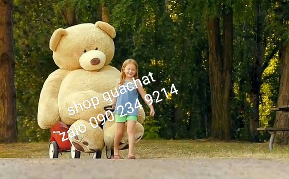 Gấu bông khổng lồ to nhất 1