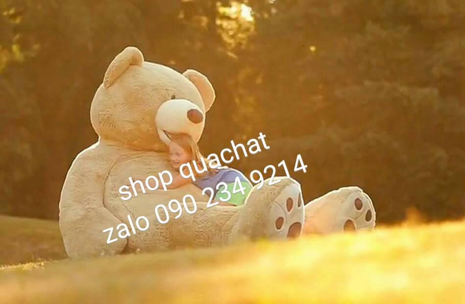 Gấu bông khổng lồ to nhất 3