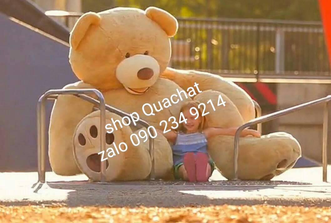 Gấu bông khổng lồ to nhất 03