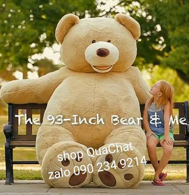 Gấu bông khổng lồ to nhất 09