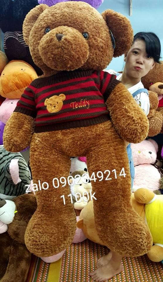 teddy xịn cỡ lớn