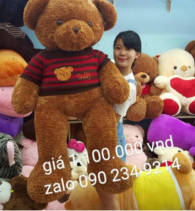 gấu teddy khổng lồ