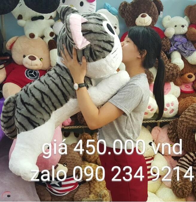 Mèo Chii size trung 01