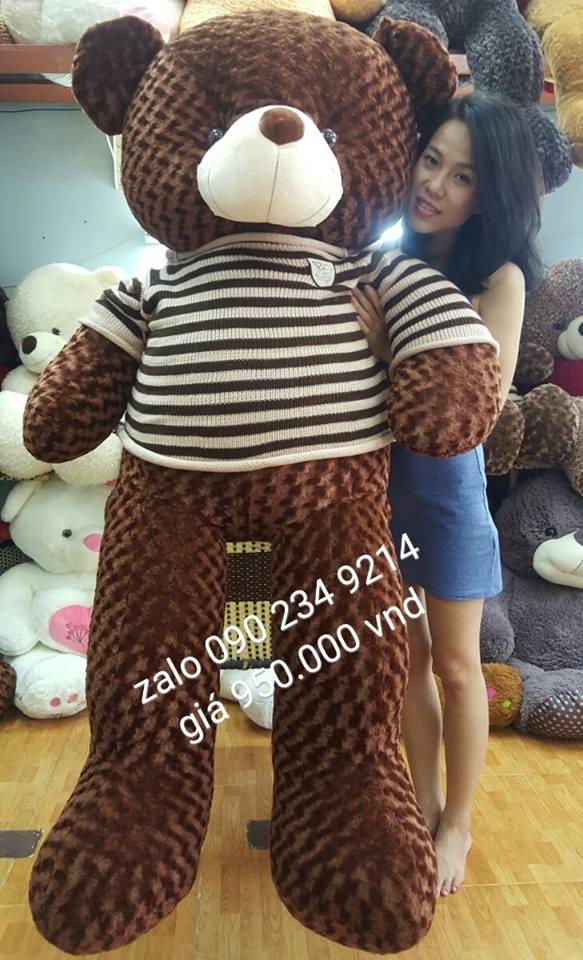 Gấu bông đẹp lông xoắn áo len 1m802