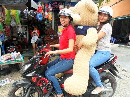 Gấu bông teddy 1m8 đẹp to giá rẻ nhất 02