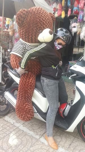 Gấu bông teddy 1m8 to siêu Hot giá rẻ nhất 02