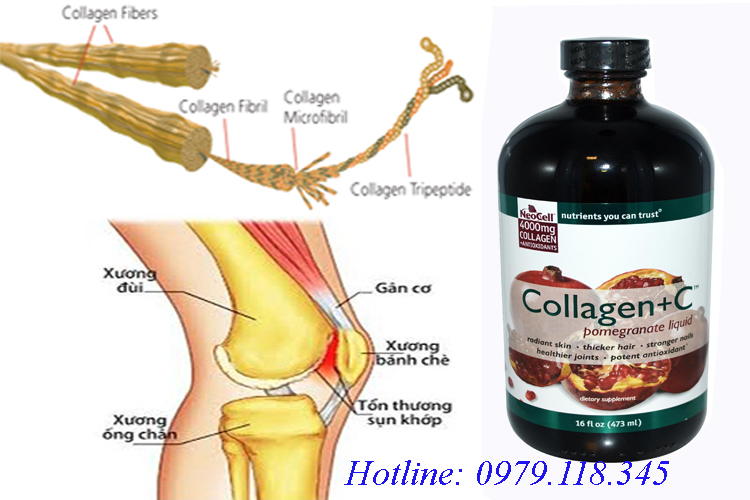 Neocell Hyaluronic Acid và Collagen + C