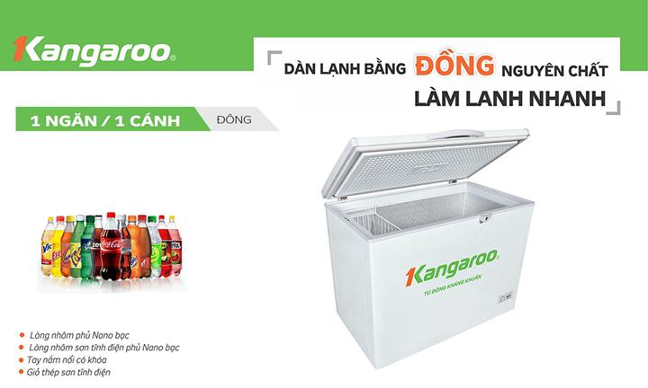 Tủ đông kháng khuẩn Kangaroo KG235C1