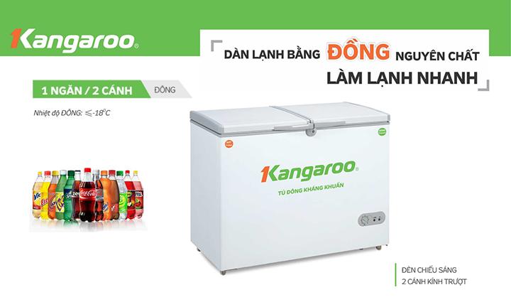 Tính năng tủ đông kháng khuẩn Kangaroo KG388C1