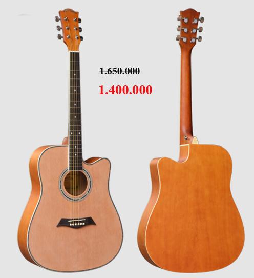 Đàn guitar acoustic Sunny SN4146N