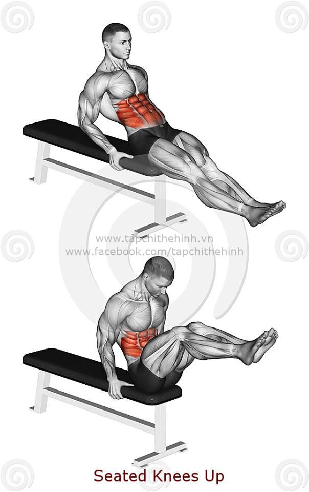 tập cơ bụng trên ghế