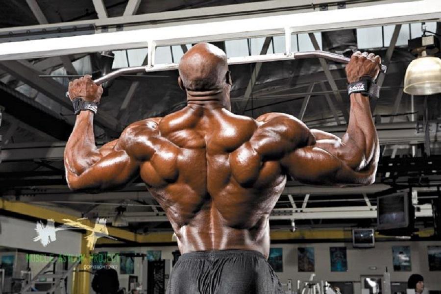 tập cơ lưng xô hiệu quả