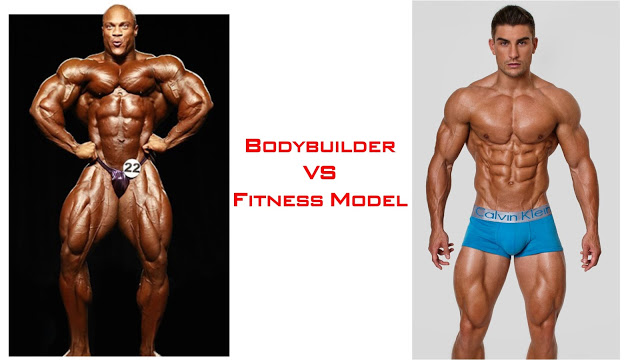 Bodybuilder và Fitness Model