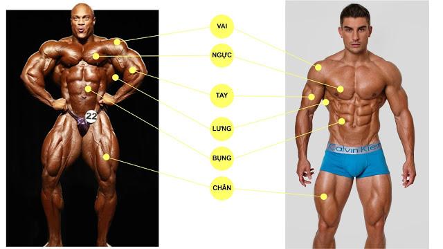 fitness với bodybuilding