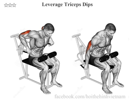 Leverage Triceps Dips