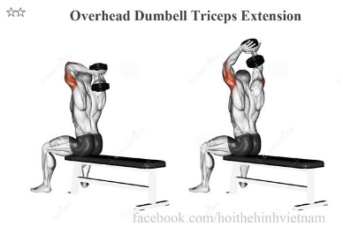 Overhead Dumbell Triceps Extension