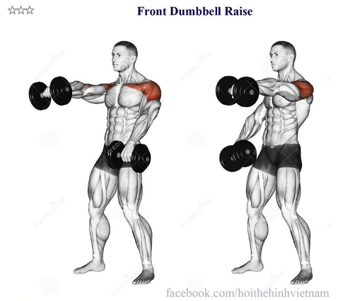 Front Dumbbell Raise