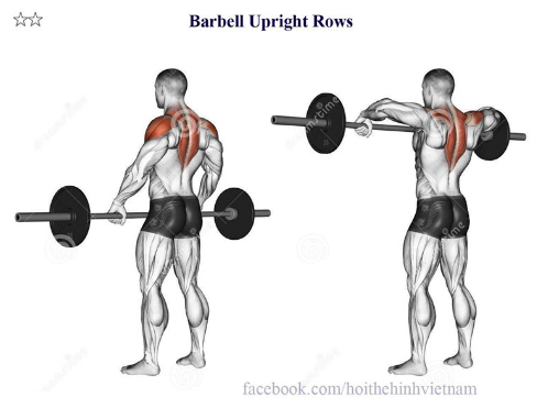 Barbell Upright Rows