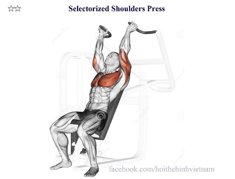 Selectorized Shoulders Press