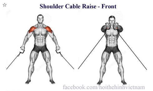 Shoulder Cable Raise - Front