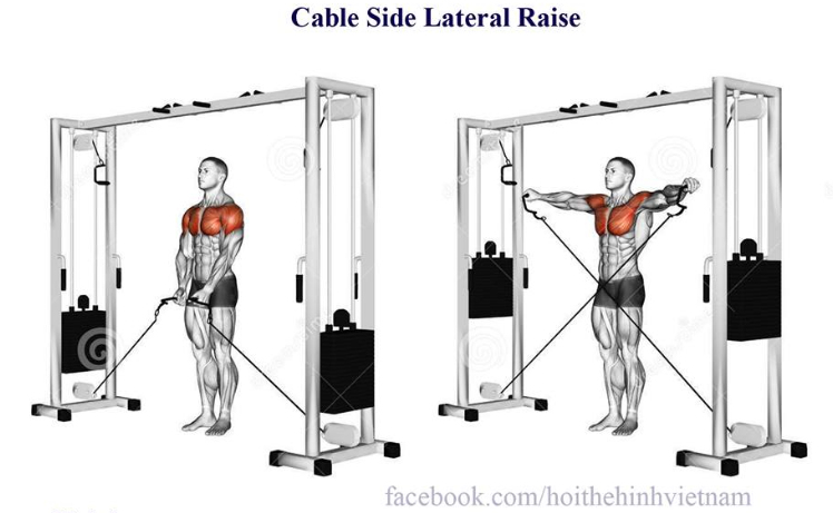 Cable Side Lateral Raise