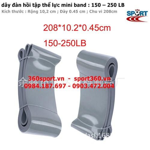 Dây đàn hồi tập thể lực mini band  150 – 250 LB