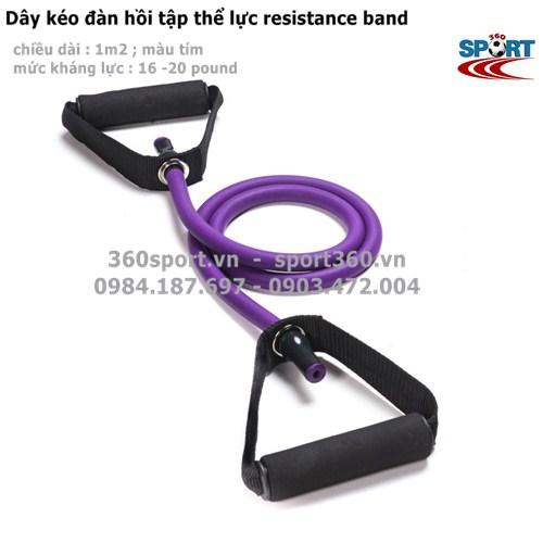 Dây kéo đàn hồi 16 - 20 LB tập thể lực resistance band màu tím