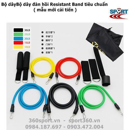 Bộ dây đàn hồi Resistant Band tiêu chuẩn