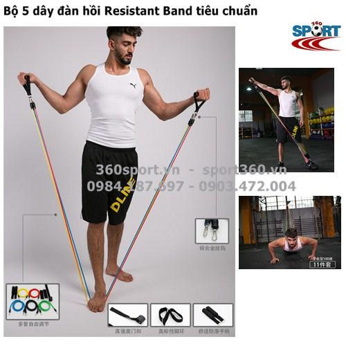 Bộ 5 dây đàn hồi Resistant Band tiêu chuẩn