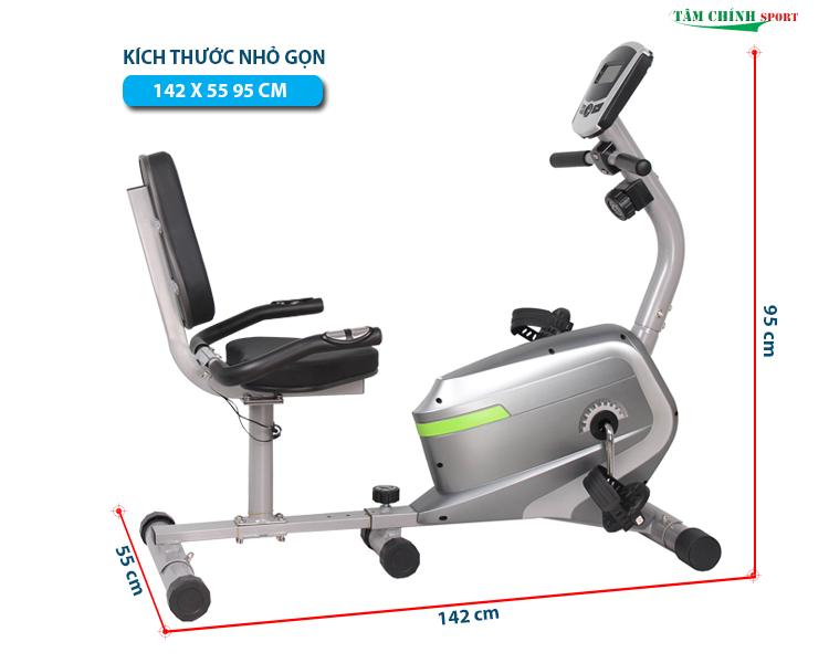 Xe đạp tập thể dục Y01007R chính hãng Động Lực