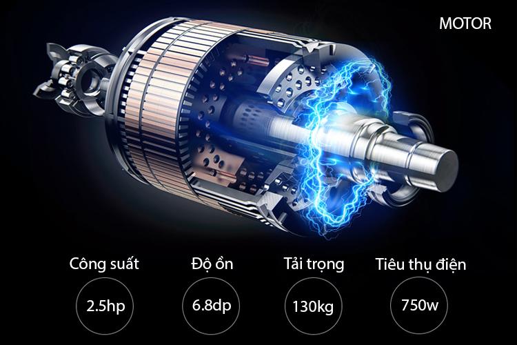 Động cơ máy chạy bộ điện PF-113D