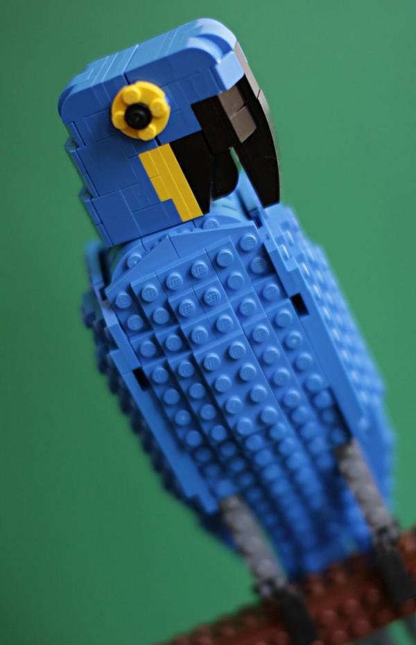 Chiêm ngưỡng những chú chim theo phong cách LEGO sáng tạo và đẹp mắt 10