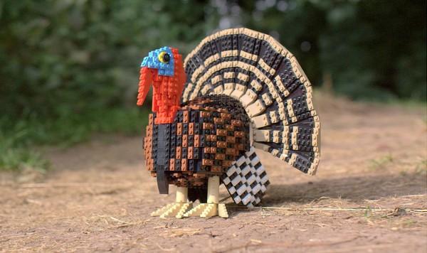 Chiêm ngưỡng những chú chim theo phong cách LEGO sáng tạo và đẹp mắt 19