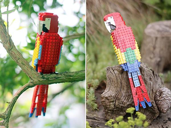 Chiêm ngưỡng những chú chim theo phong cách LEGO sáng tạo và đẹp mắt 4