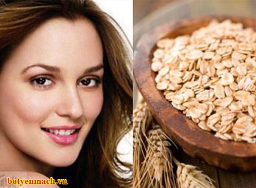 Trị tóc khô với bột yến mạch nguyên chất