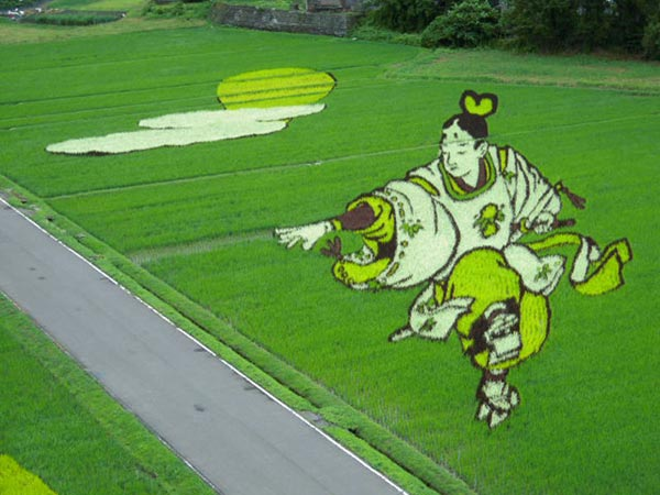 Ấn tượng nghệ thuật  Tanbo trên đồng lúa Nhật Bản