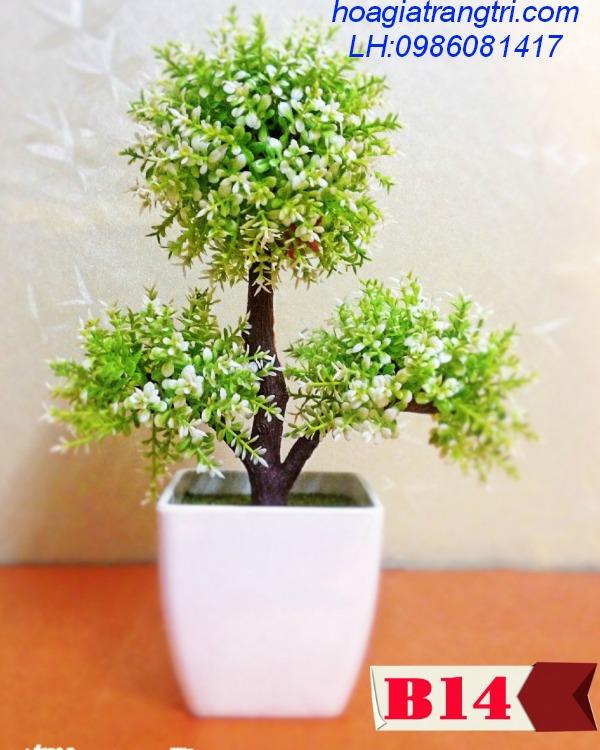 Cây cảnh giả tranh trí đẹp cùng Hoa lụa Phương Thảo