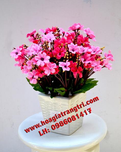 Mua hoa giả giá rẻ ở Hà Nội đẹp làm bằng vài lụa - hoa cúc khô