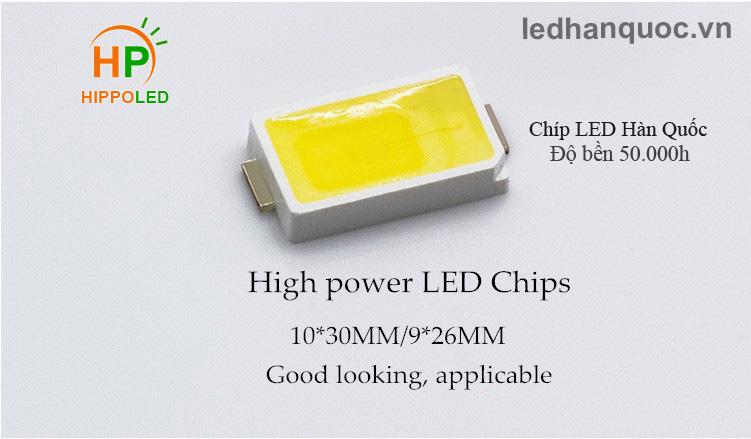 hippo-led-chip-led-han-quoc
