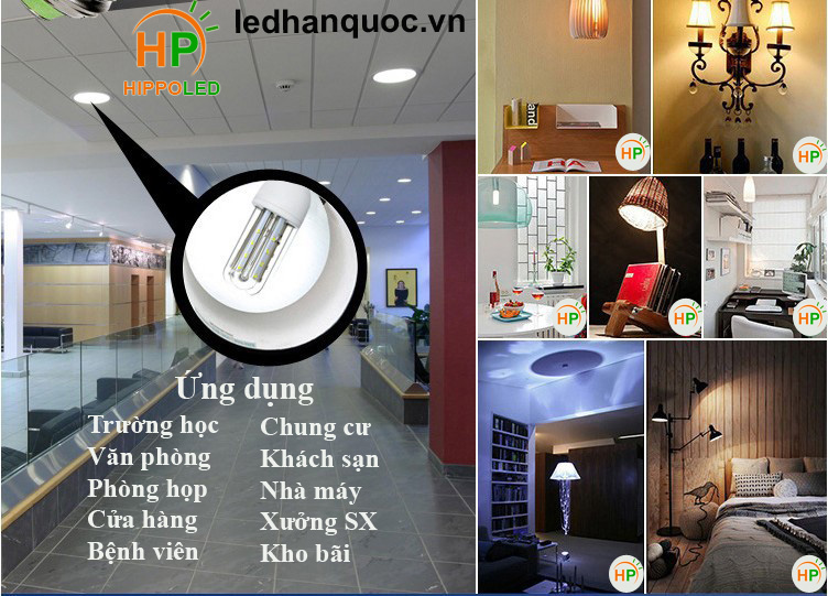 Ung-dung-hippo-led led compact 4u han quoc huytech