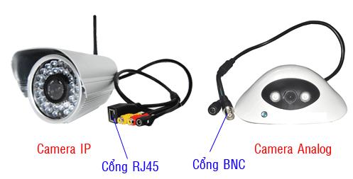 Camera quan sát IP và camera quan sát Analog