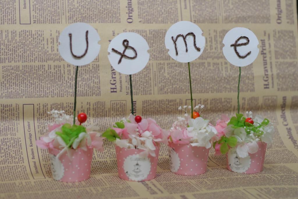 cupcake Hoa tươi mãi mãi  phụ kiện chụp hình