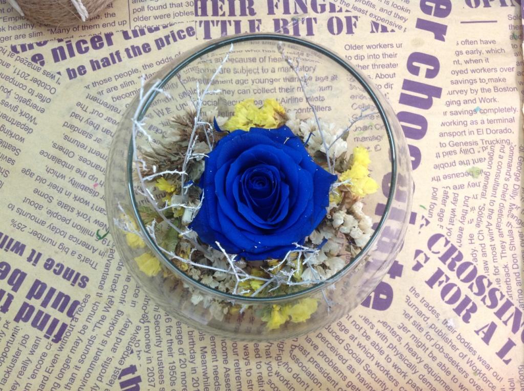 Lọ Thủy Tinh Tròn Hoa hồng Xanh Magic