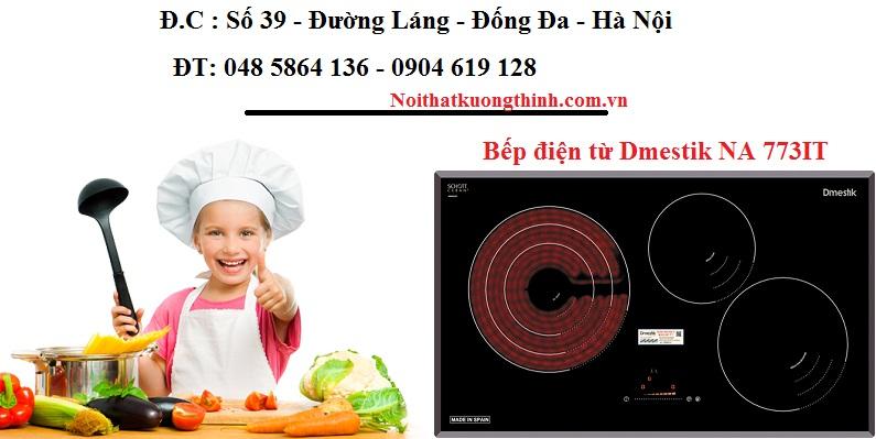 Bếp điện từ Dmestik NA 773IT sử dụng ó tốt không?