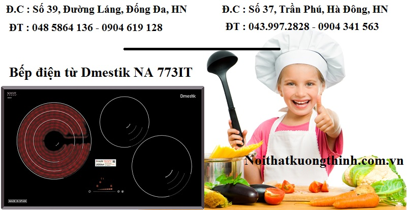 Nấu ăn ngon với bếp điện từ Dmestik