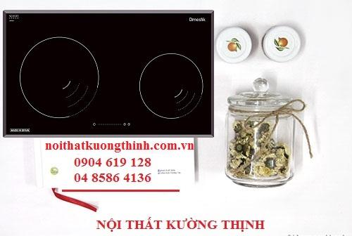 Bếp từ Dmestik NA 772IB phiên bản đáng giá nhất hiện nay
