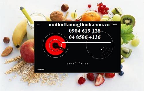 Có nên mua bếp điện từ Dmestik không?