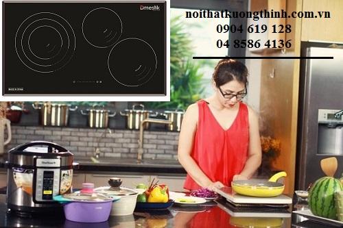 Có nên mua bếp điện từ Dmestik NA 773IT không?