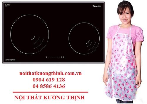Đại lý bán bếp từ Bếp từ Dmestik NA 772IB tại Hà Nội